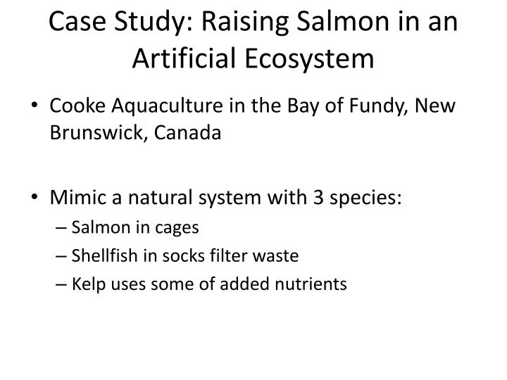 Case Study: Raising Salmon in an Artificial Ecosystem