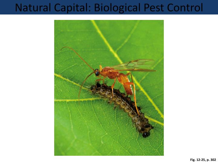 Natural Capital: Biological Pest Control