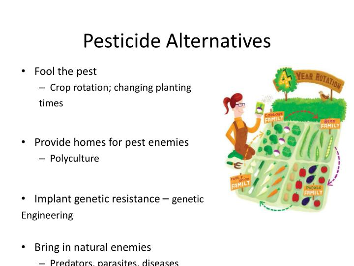 Pesticide Alternatives