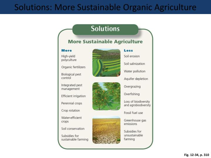 Solutions: More Sustainable Organic Agriculture