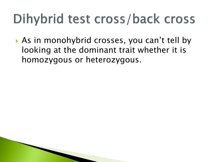 Dihybrid test cross back cross