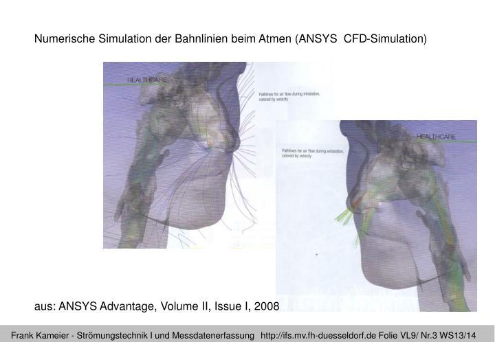 Numerische Simulation der Bahnlinien beim Atmen (ANSYS  CFD-Simulation)