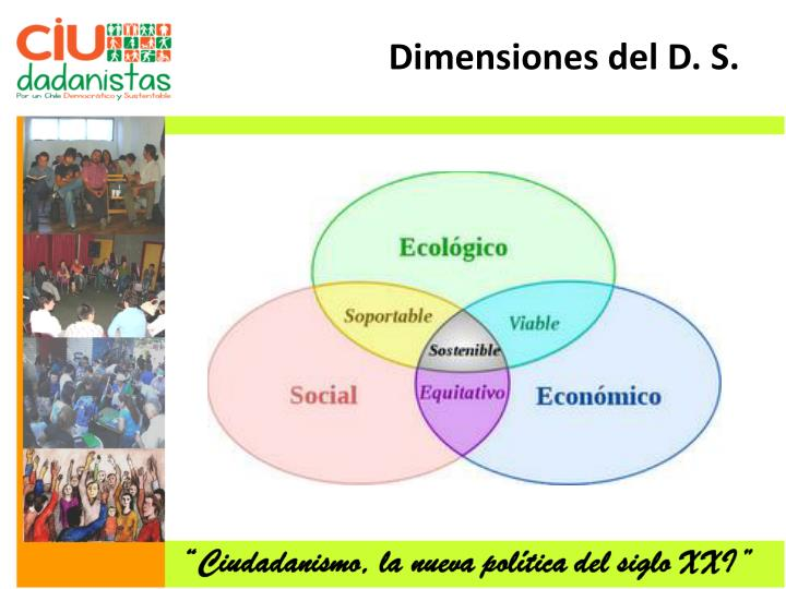 Dimensiones del D. S.