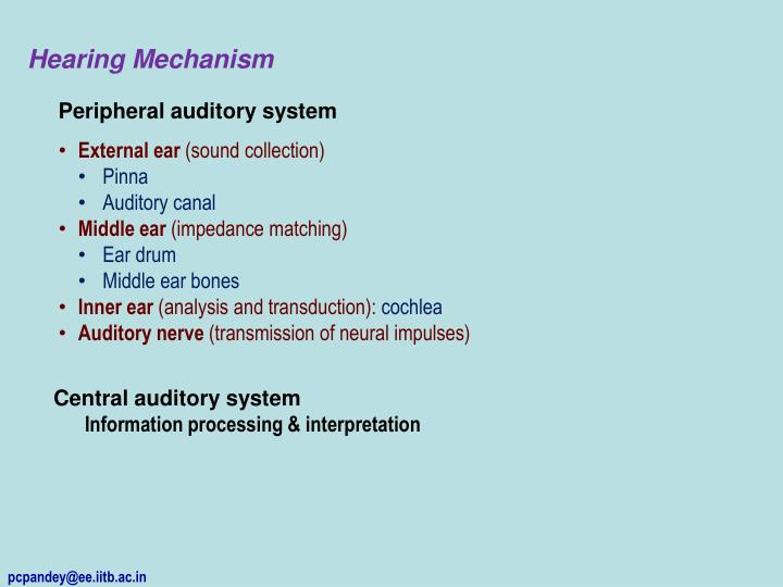 Hearing Mechanism