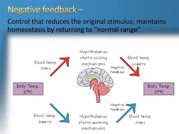 Negative feedback –