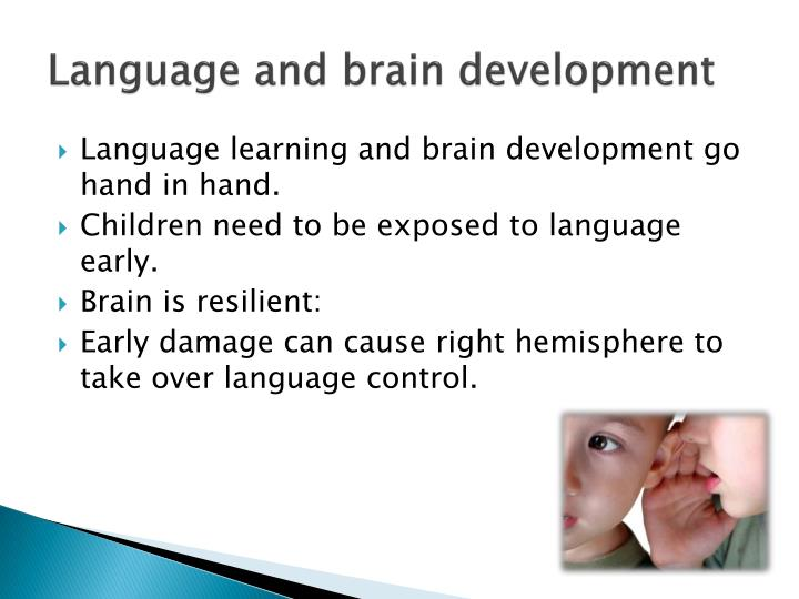 Language and brain development