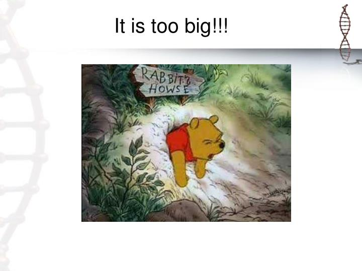 It is too big!!!