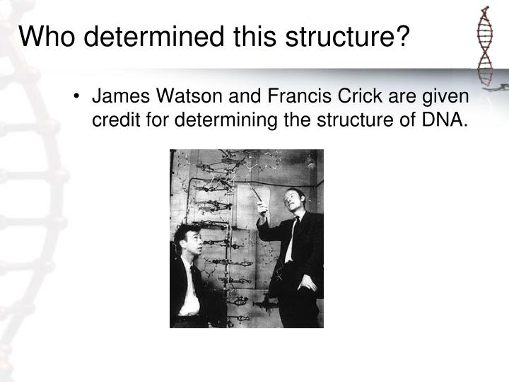 Who determined this structure?