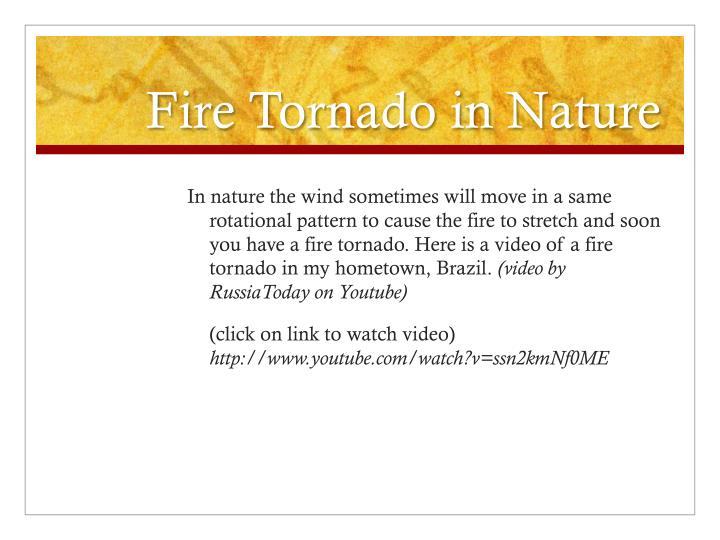 Fire Tornado in Nature