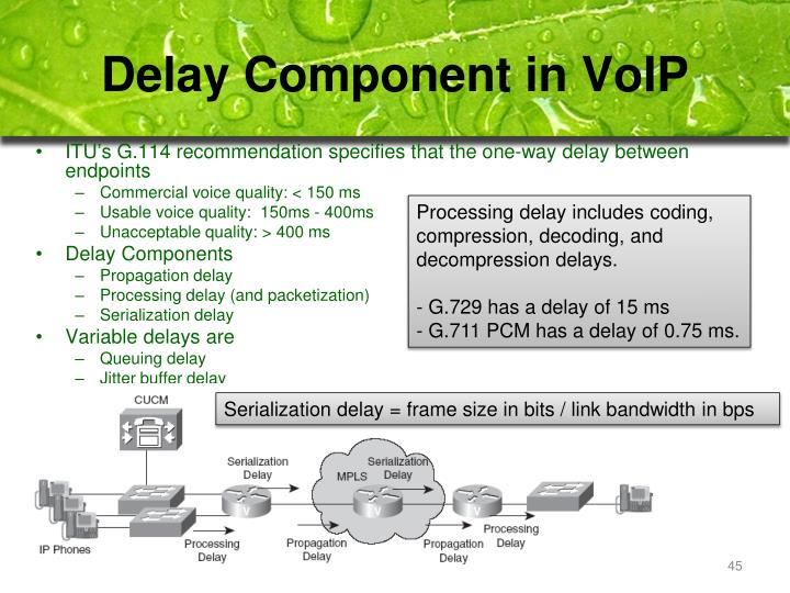 Delay Component in VoIP