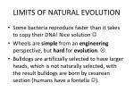 limits of natural evolution