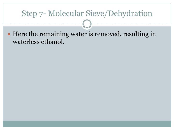 Step 7- Molecular Sieve/Dehydration