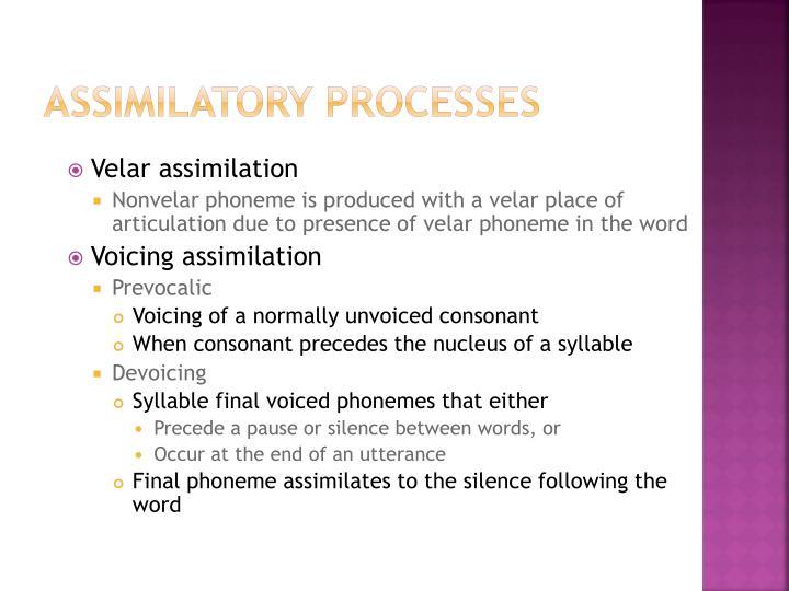 Assimilatory Processes