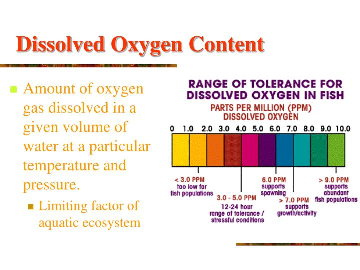 Dissolved Oxygen Content