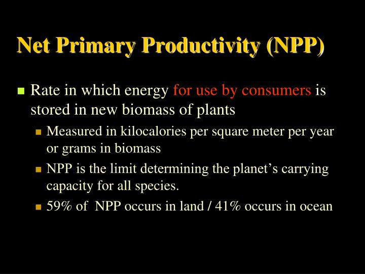 Net Primary Productivity (NPP)