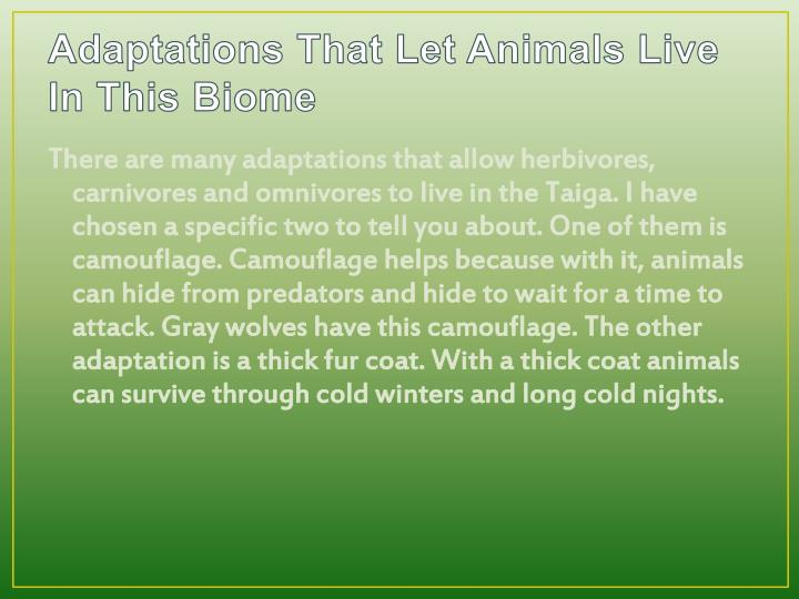 Adaptations That Let Animals Live In This Biome