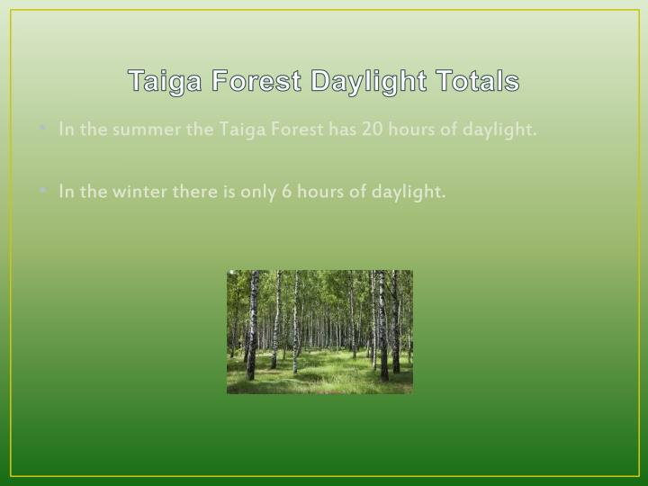 Taiga Forest Daylight Totals