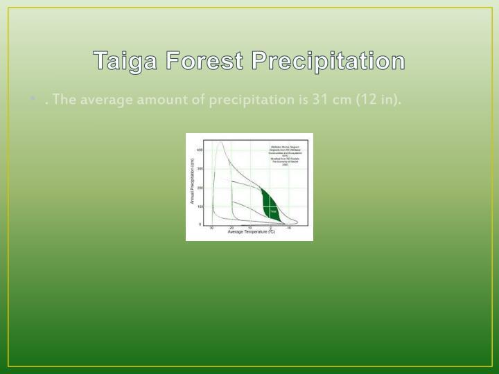 Taiga Forest Precipitation