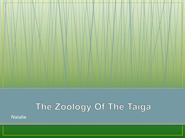 The Zoology Of The Taiga