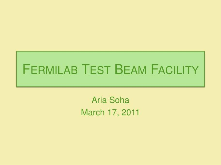 Fermilab Test Beam Facility