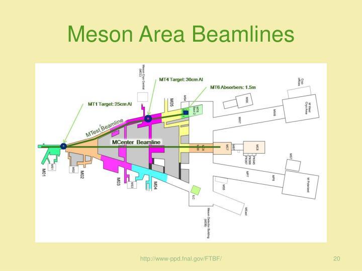 Meson Area