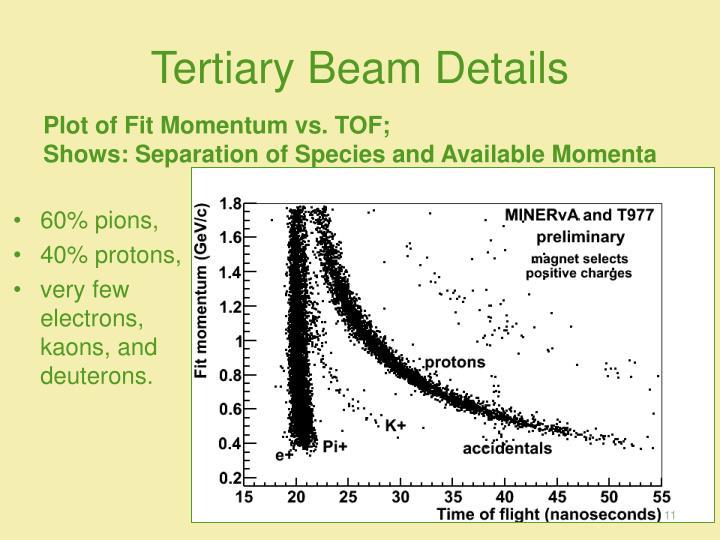 Tertiary Beam Details