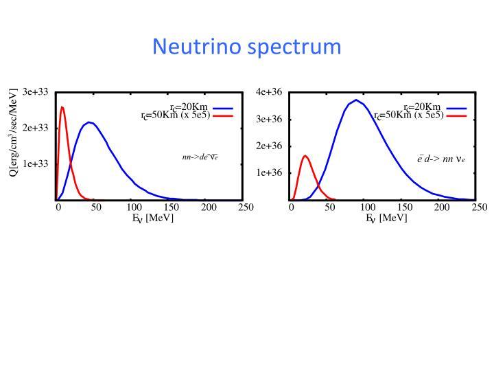 Neutrino spectrum