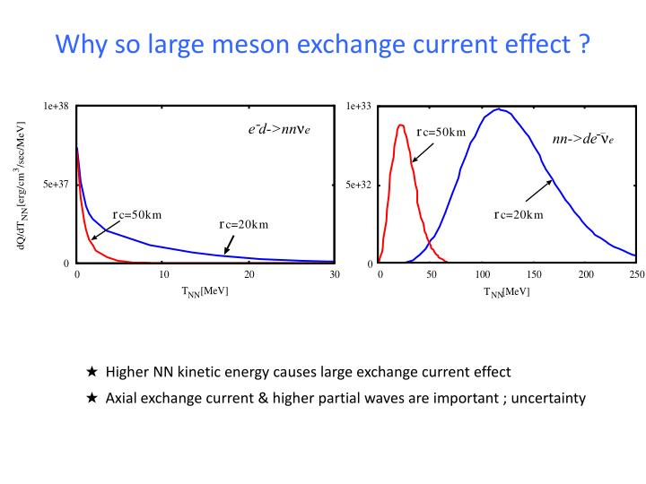 Why so large meson exchange current effect ?