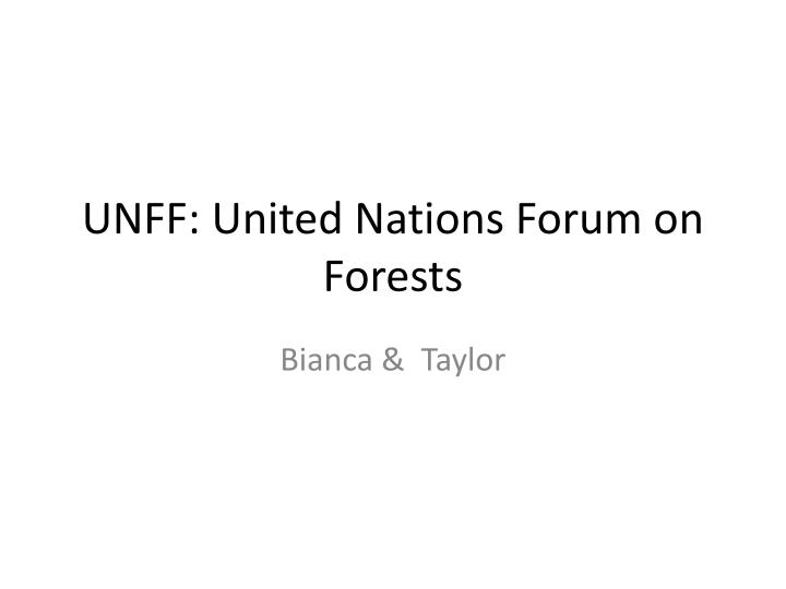 Unff united nations forum on forests
