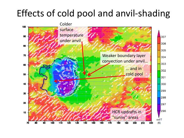 Effects of cold pool and anvil-shading