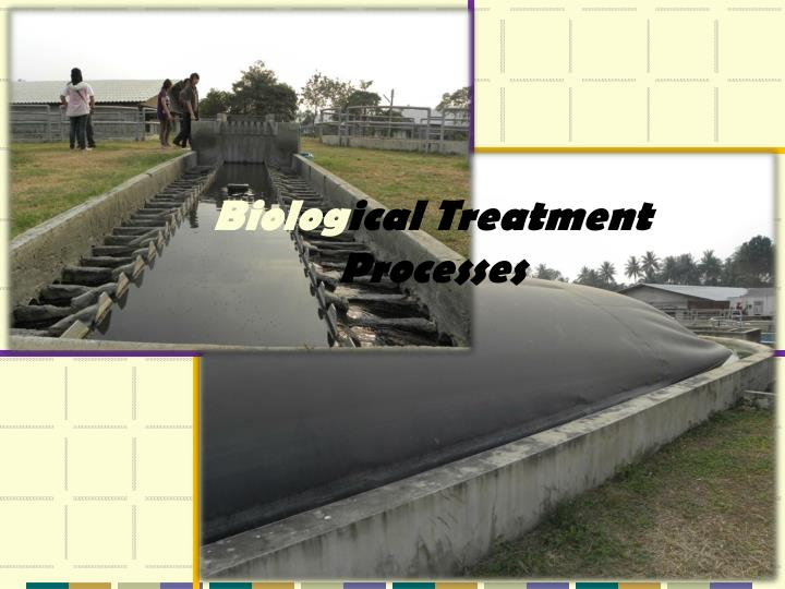 biolog ical treatment processes