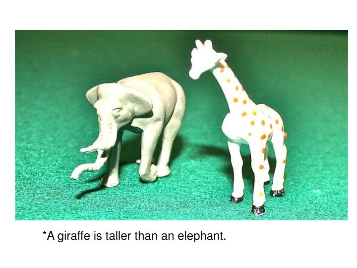 *A giraffe is taller than an elephant.