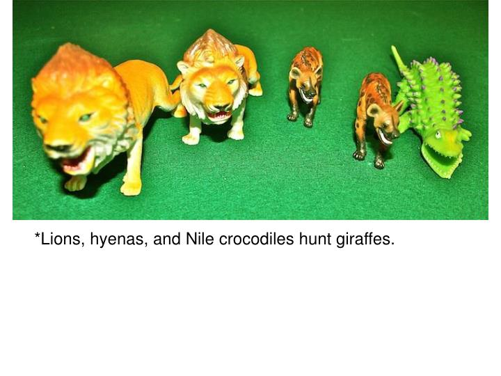 *Lions, hyenas, and Nile crocodiles hunt giraffes.
