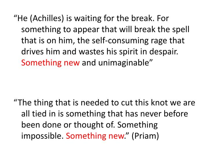 """He (Achilles) is waiting for the break. For something to appear that will break the spell that is on him, the self-consuming rage that drives him and wastes his spirit in despair."