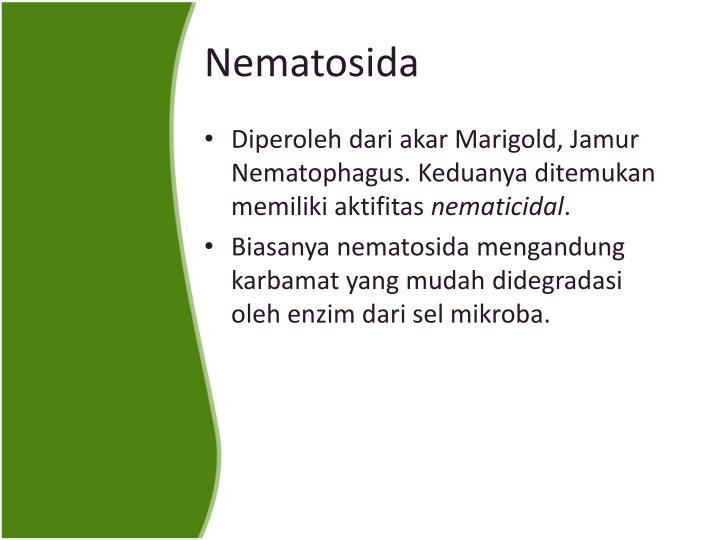 Nematosida