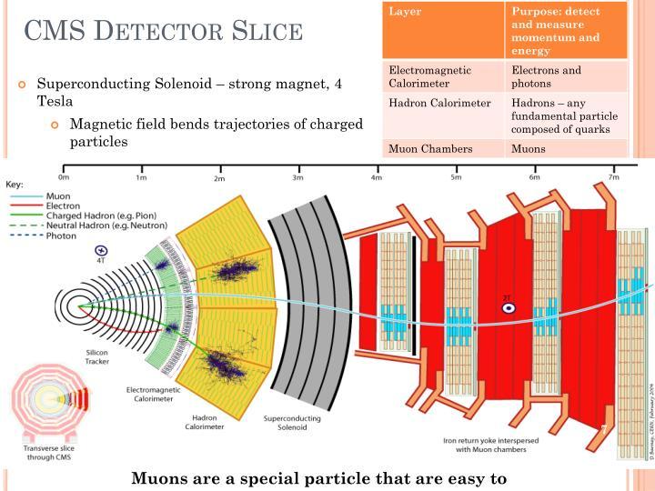 CMS Detector Slice