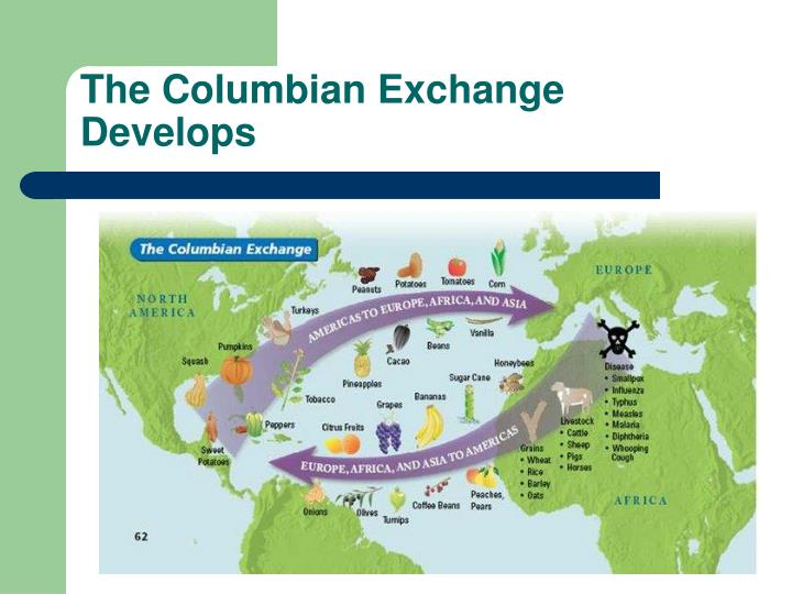 The Columbian Exchange Develops