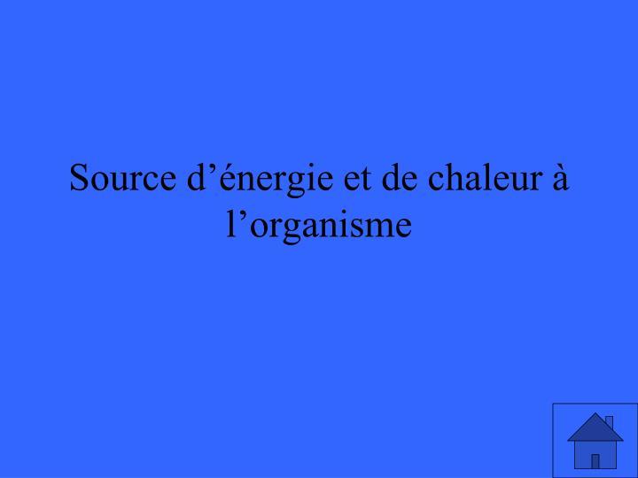 Source d'énergie et de chaleur à l'organisme