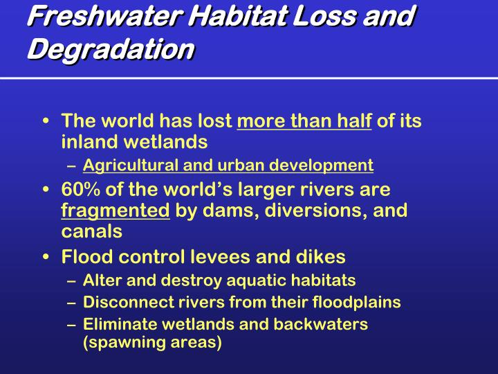 Freshwater Habitat Loss and Degradation
