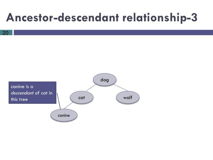 Ancestor-descendant relationship-3