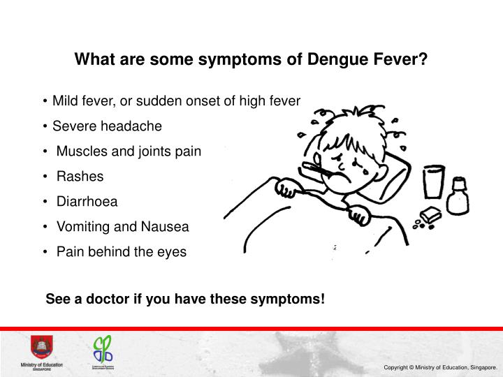 What are some symptoms of Dengue Fever?