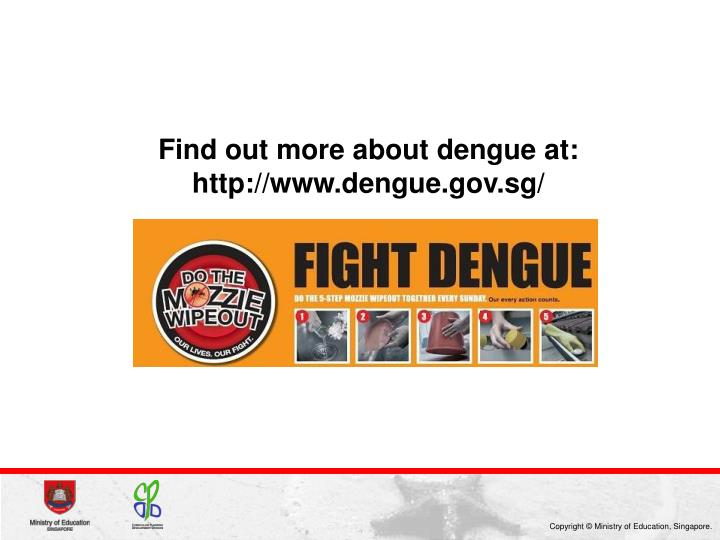 Find out more about dengue at: