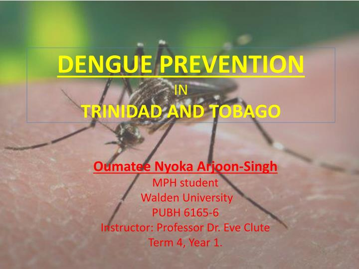Dengue prevention in trinidad and tobago