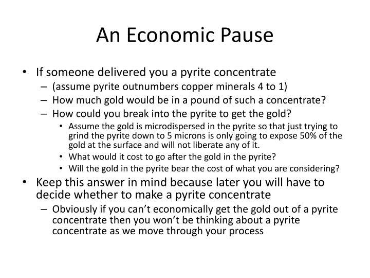 An Economic Pause