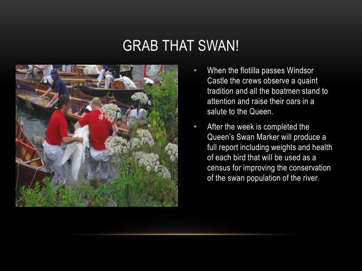 Grab That Swan!