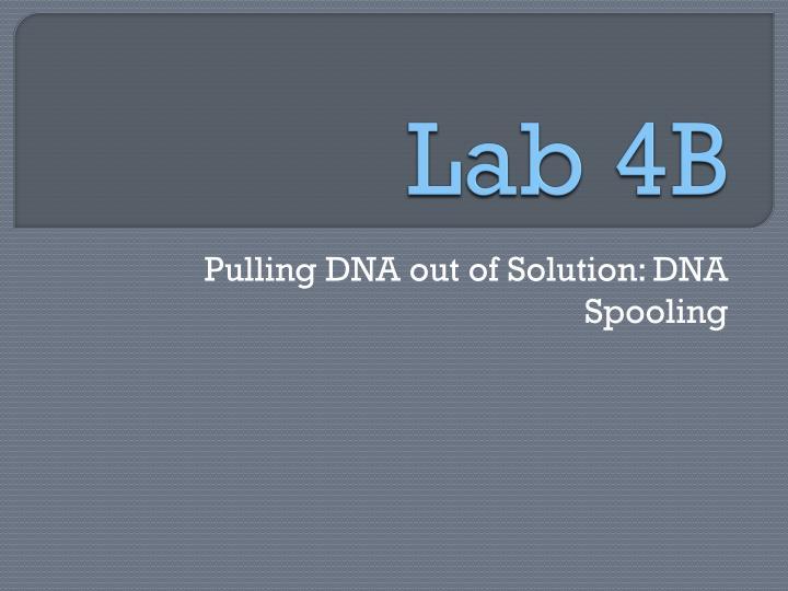 Lab 4B