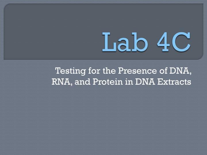Lab 4C
