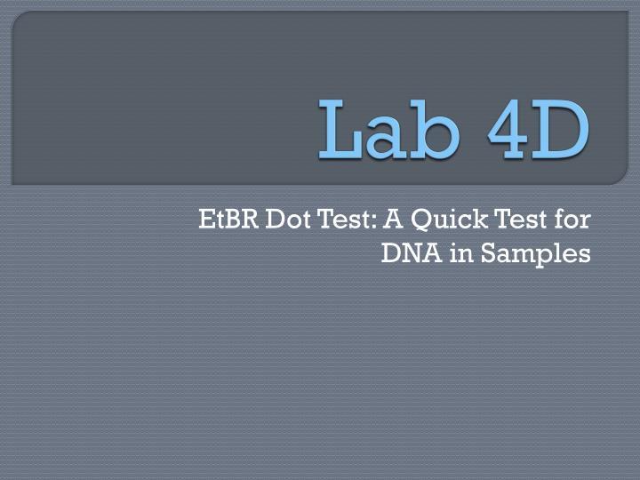 Lab 4D