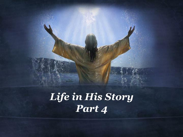 Life in His Story