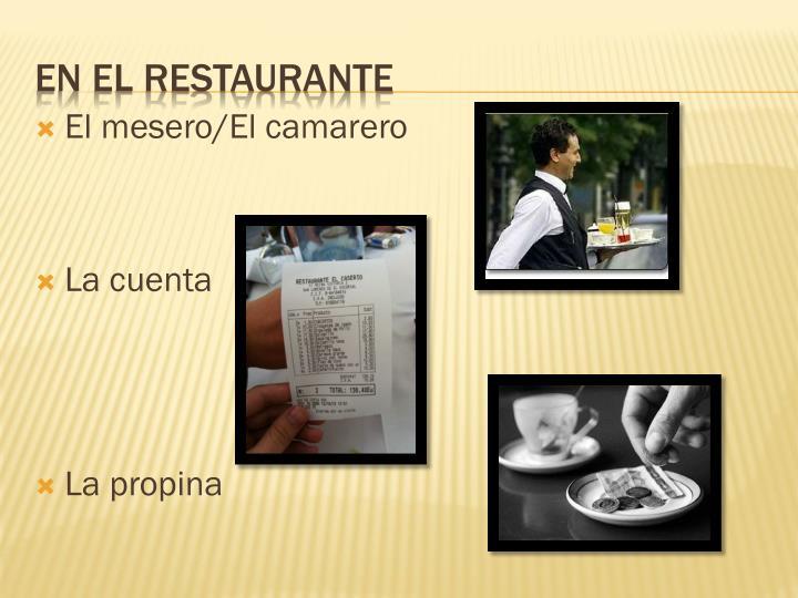 El mesero/El camarero